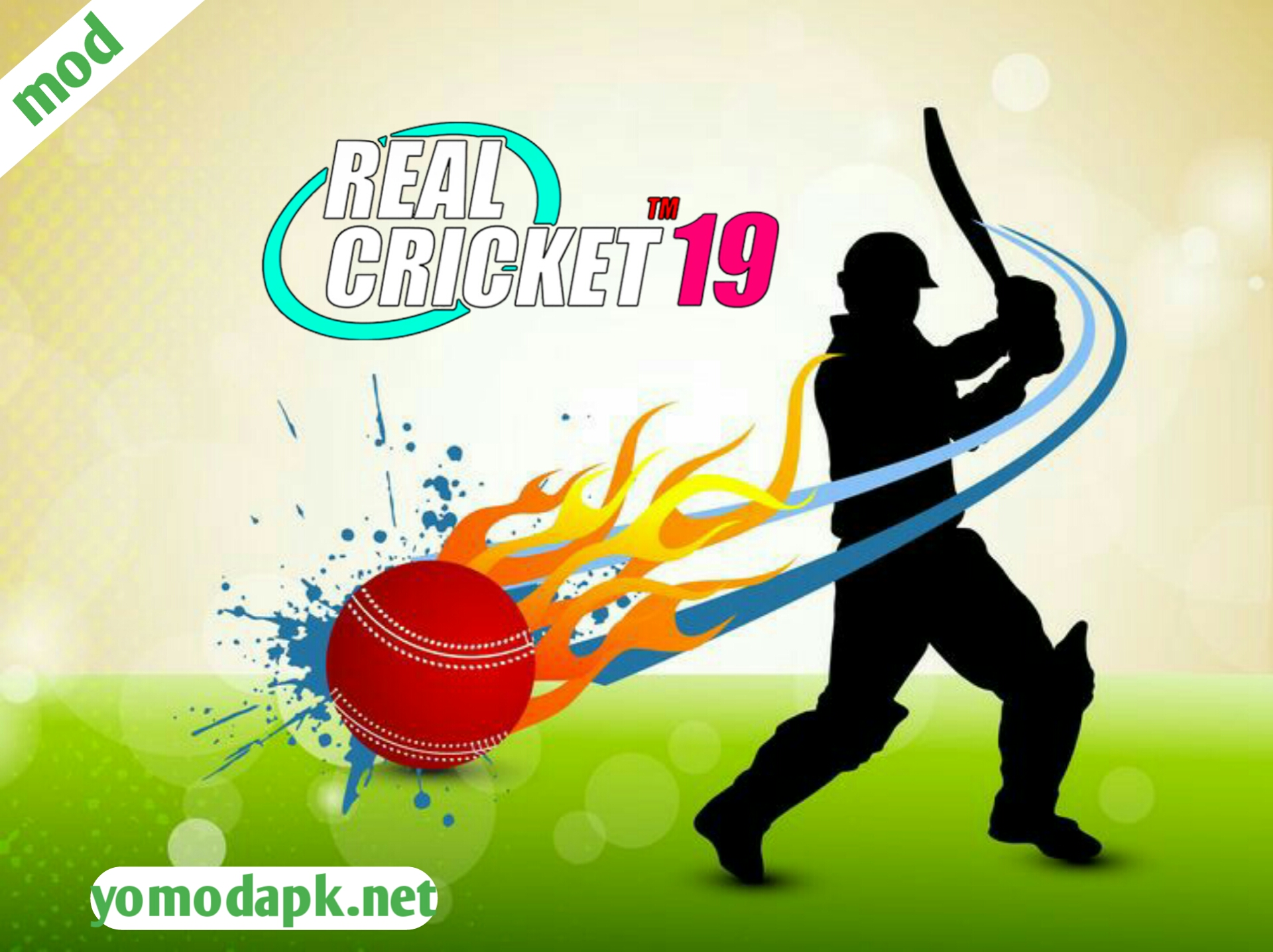 Real cricket 19 mod