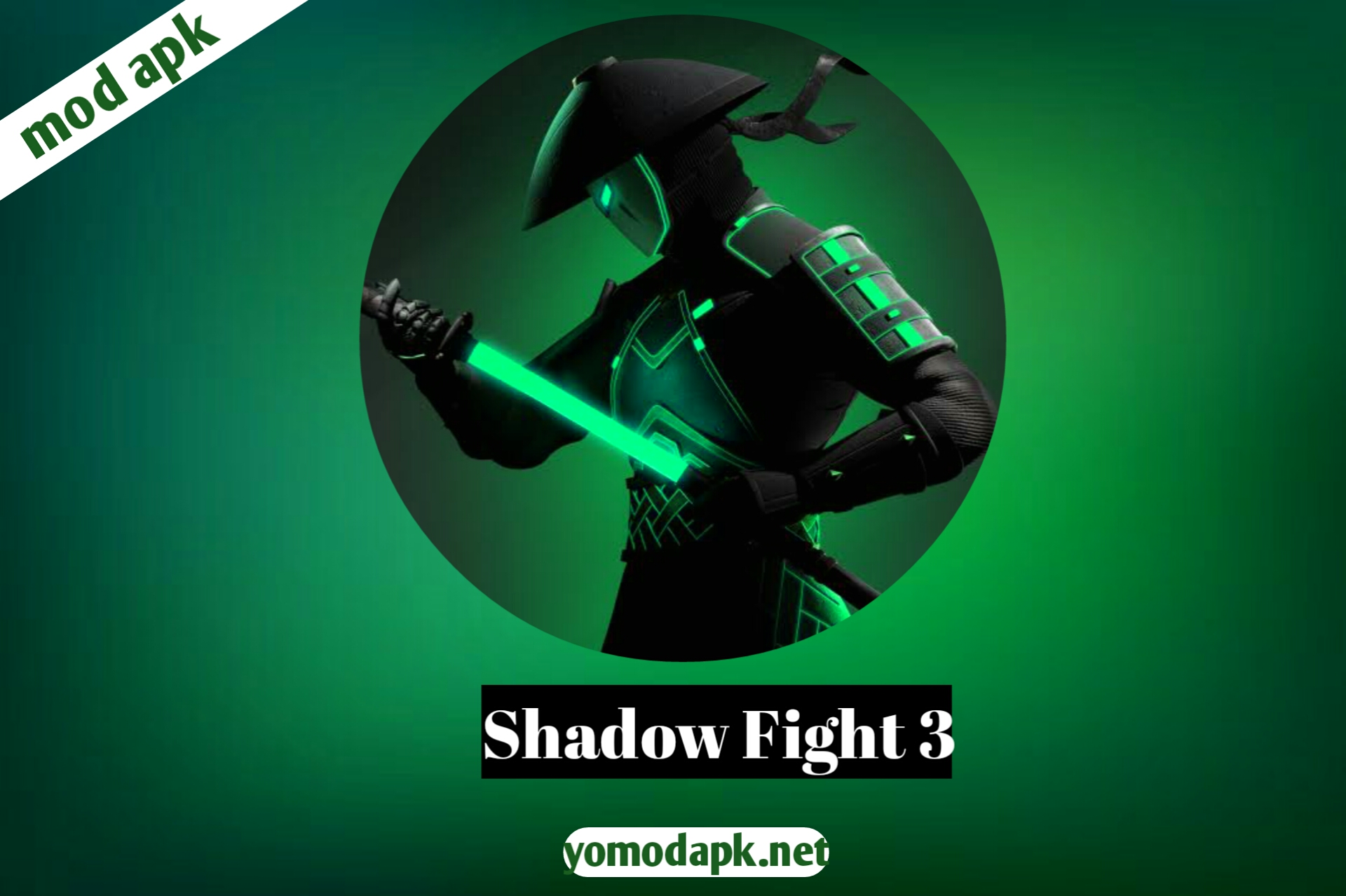 shadow fight 3